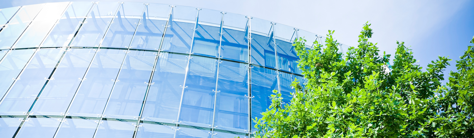 Glass building with green tree in front
